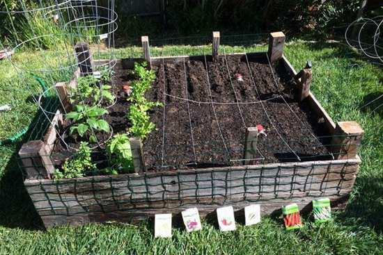 DIY Garden Box Ideas