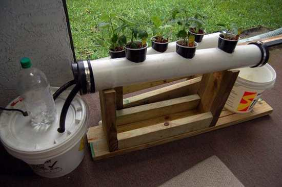 DIY Hydroponic System Projects