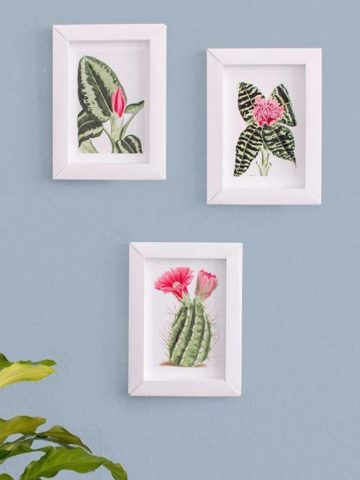 DIY Photo Frame Projects