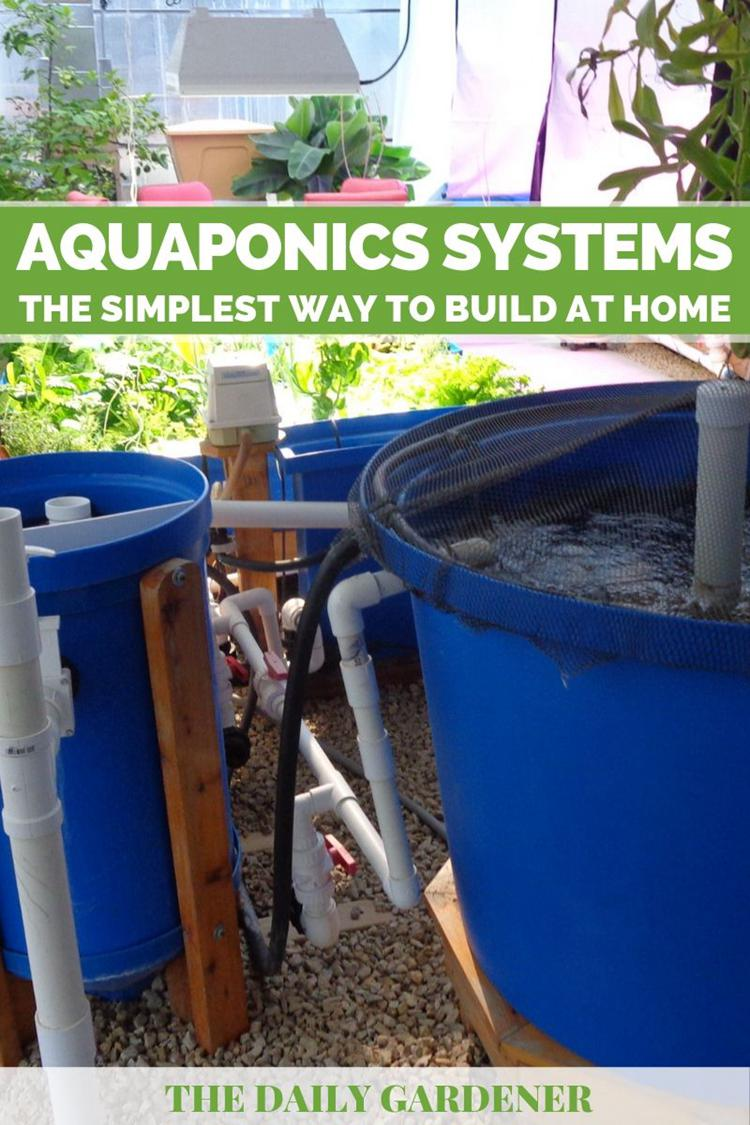 10. DIY Aquaponics System
