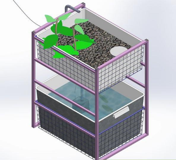 12. DIY Indoor Aquaponics System