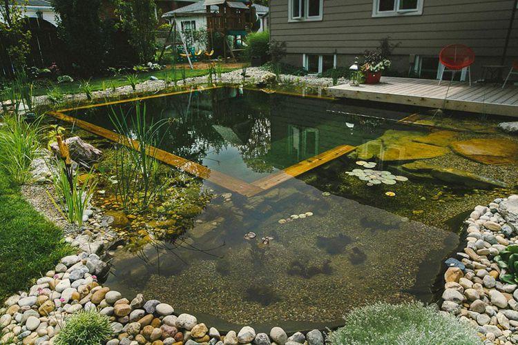 15. DIY Natural Swimming Pool