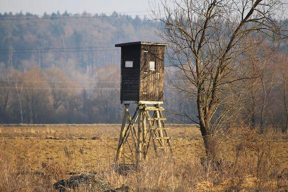 15. How To Build An Inexpensive Deer Blind