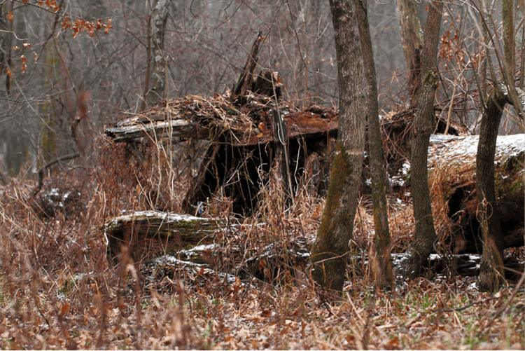 16. DIY Natural Deer Hunting Blind