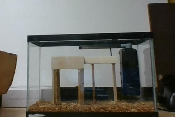 17. DIY Aquaponics System For Small Space