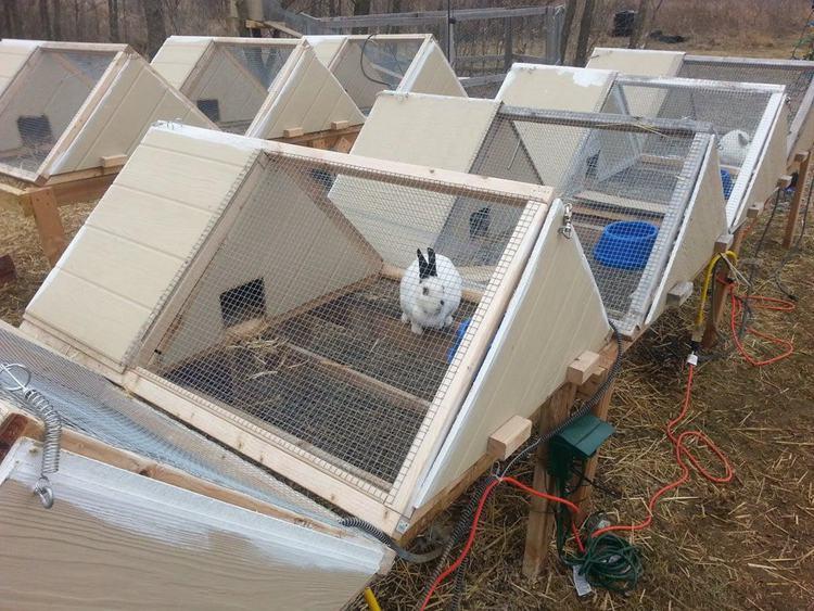 18. DIY A-Frame Rabbit Hutch