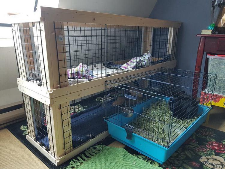 20. DIY Two Story Indoor Rabbit Hutch