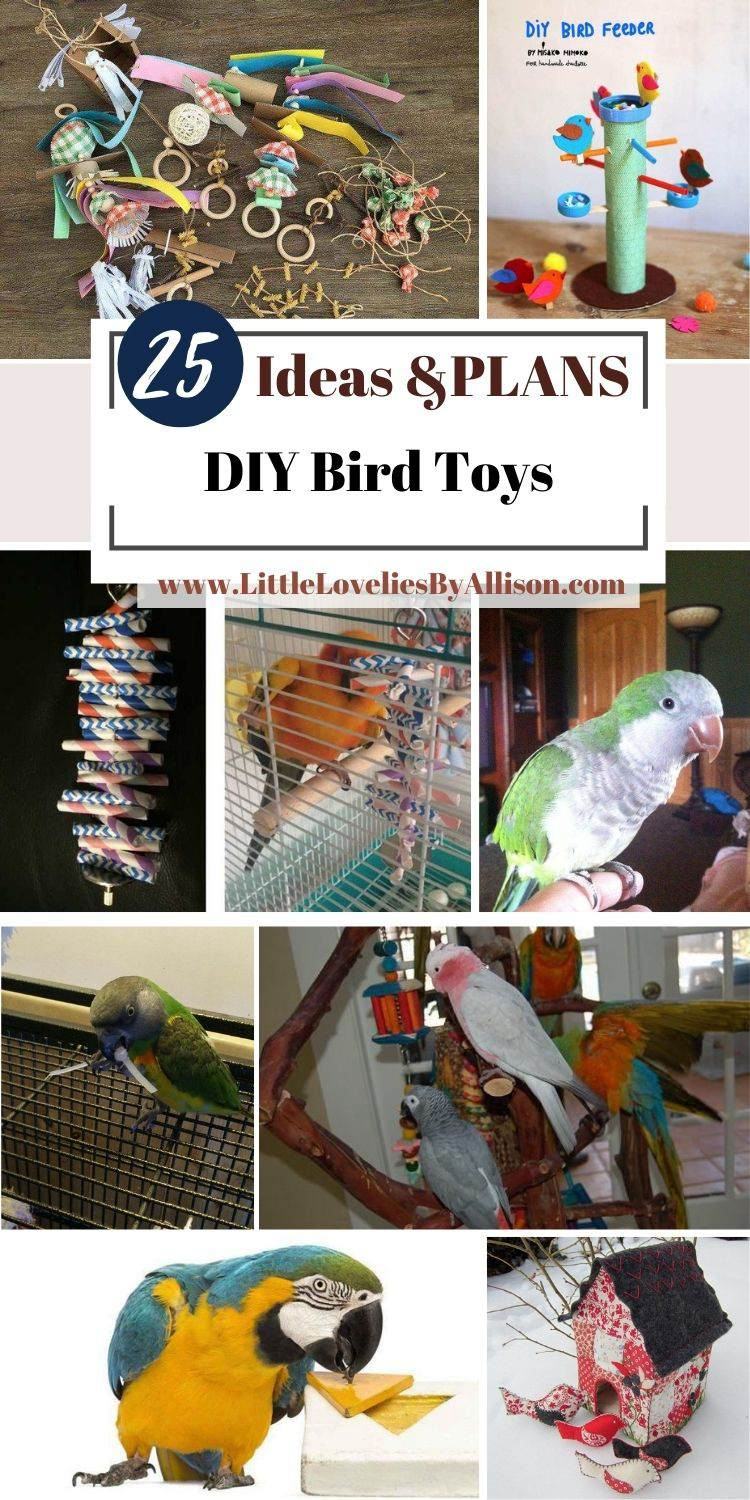25 DIY Bird Toys_ How To Make The Perfect Toys For Birds