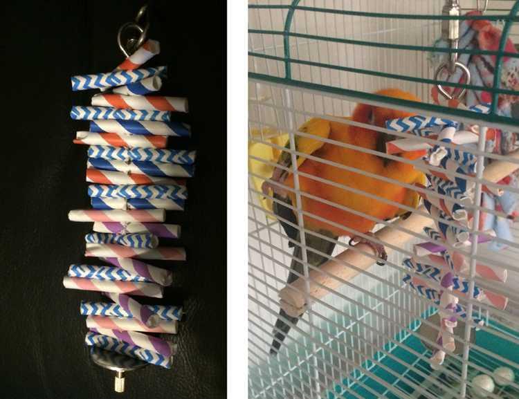 5. DIY Bird Toys With Straw