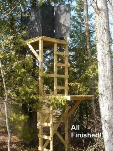 DIY Deer Blind Projects