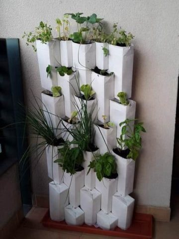 DIY Wall Planter Projects