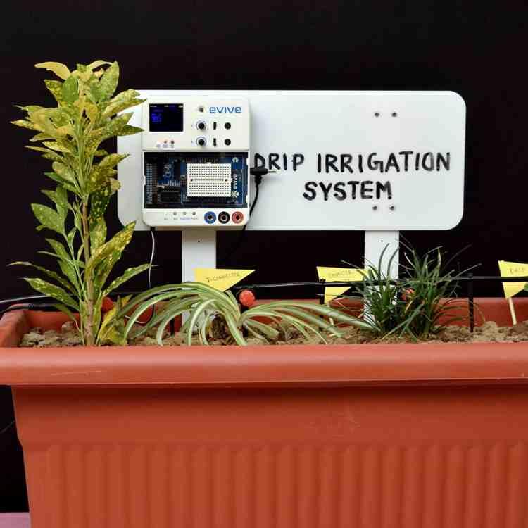 1. DIY Drip Irrigation System