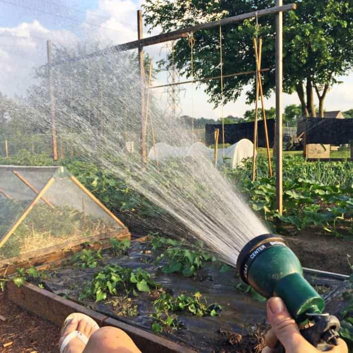 12. Homemade Drip Irrigation System