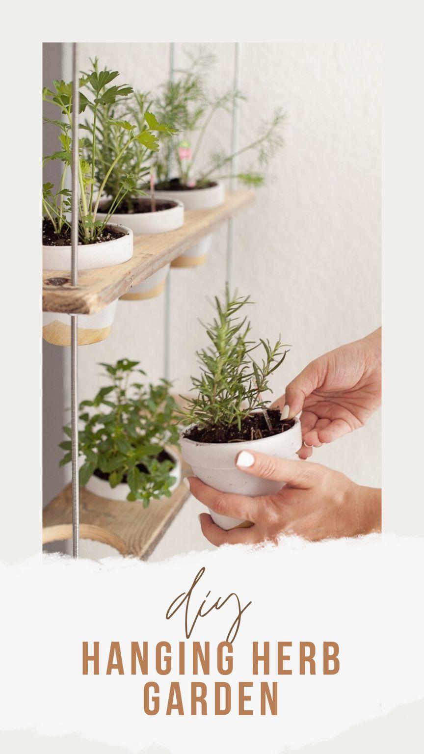 13. DIY Hanging Herb Garden Tutorial