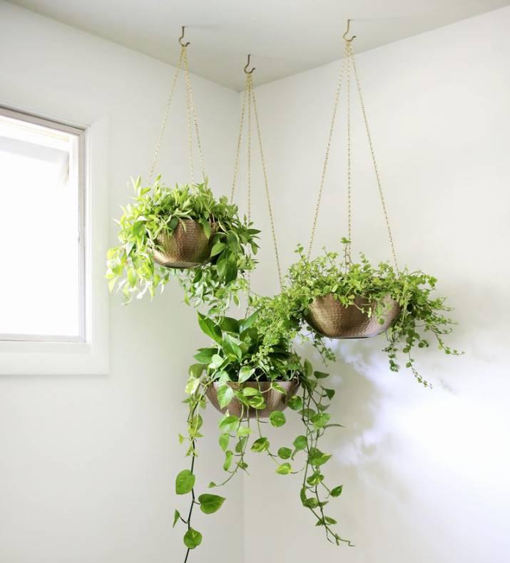 14. Easy Hanging Planter DIY