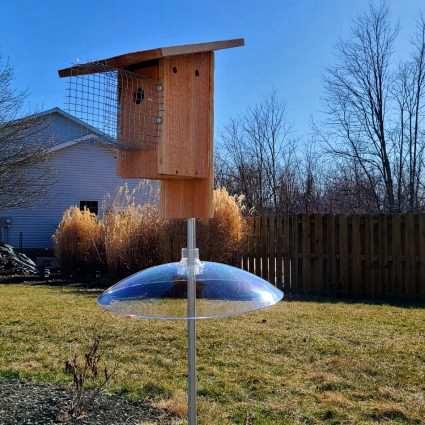 21. DIY Cedar Bluebird House