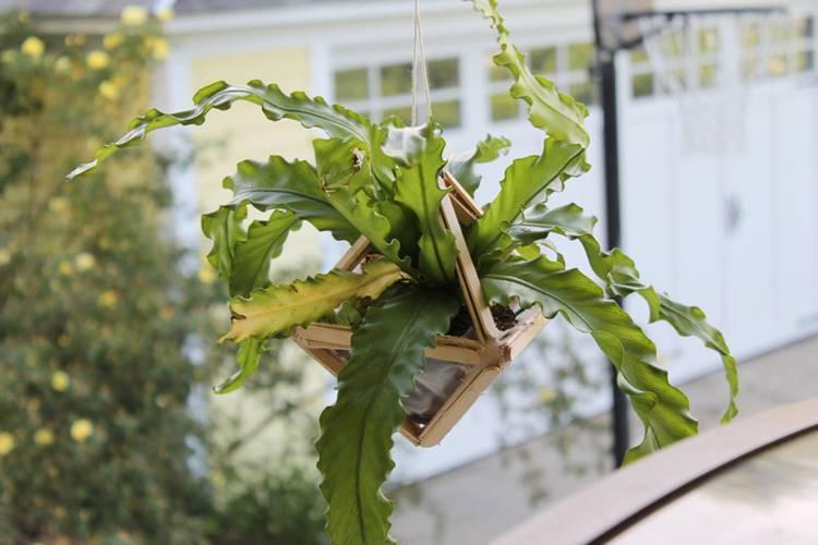 21. DIY Modern Hanging Planter