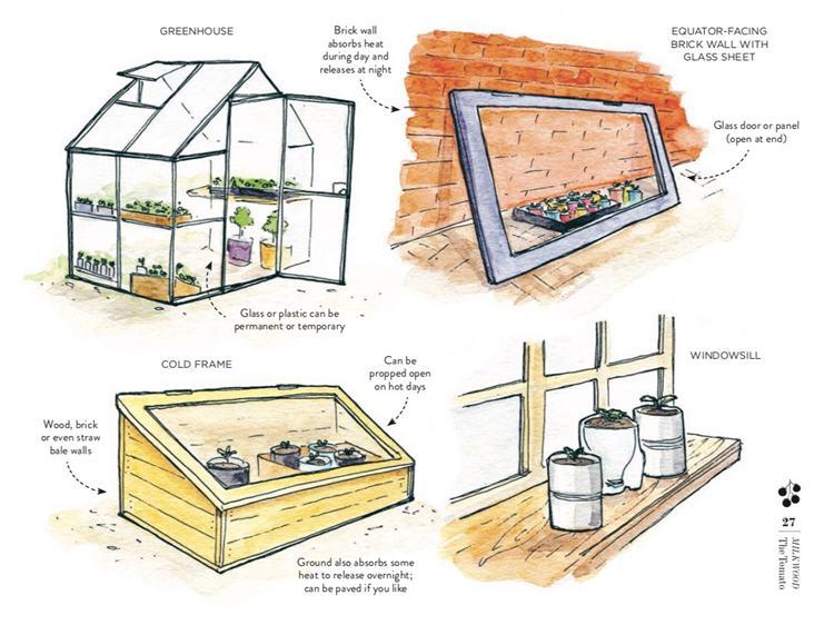 23. Making A Mini Greenhouse