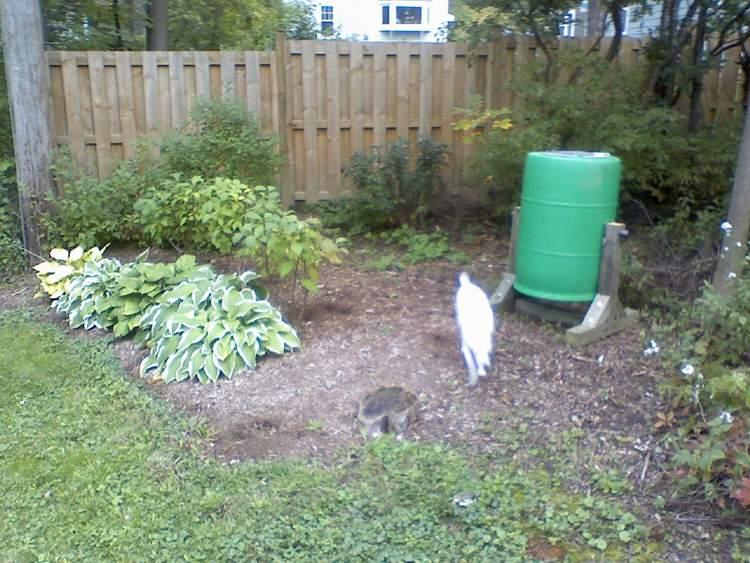 6. Compost Tumbler DIY