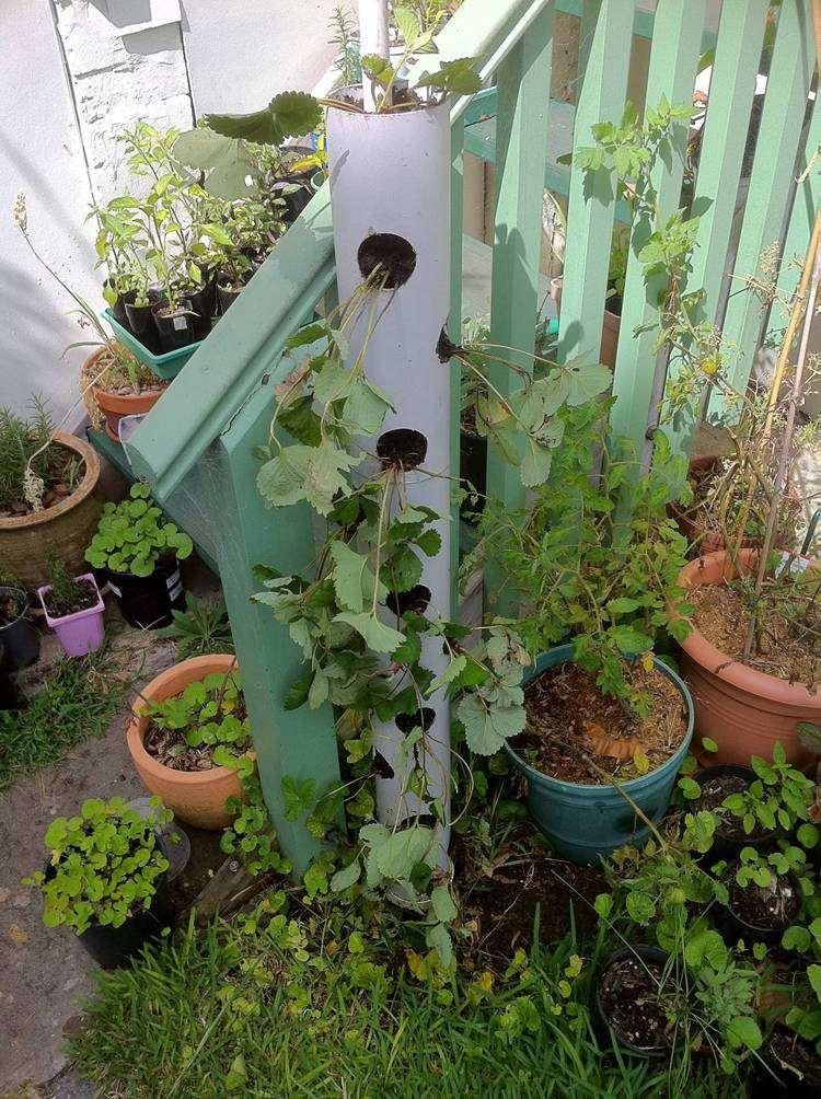 9. DIY Vertical Tube Planter