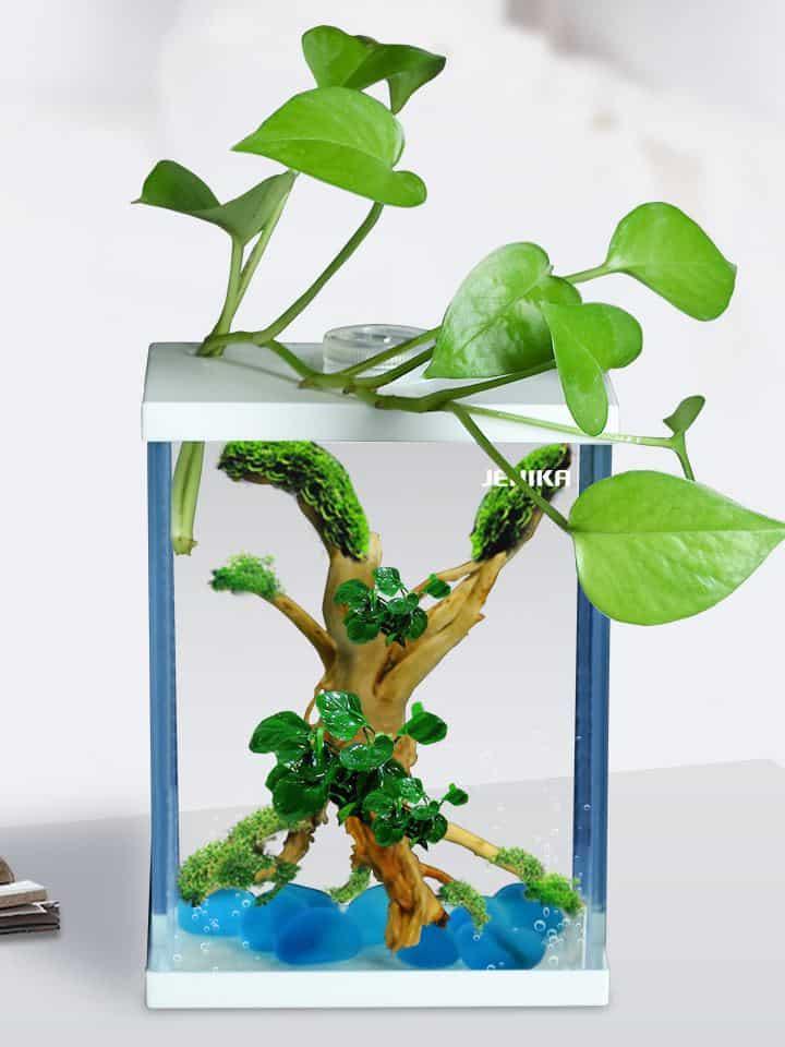 DIY-Aquarium-Lid-Projects