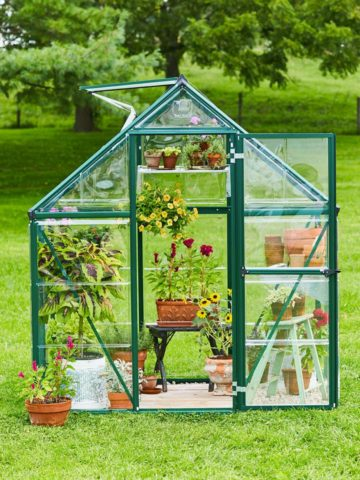 DIY Mini Greenhouse Plans