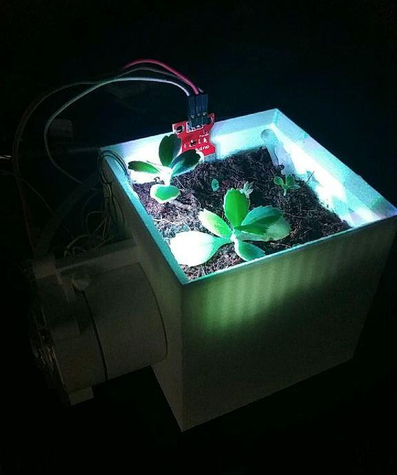 1. DIY Self Watering Planter