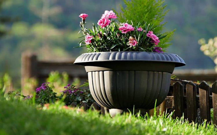 10. Self Watering Planter DIY