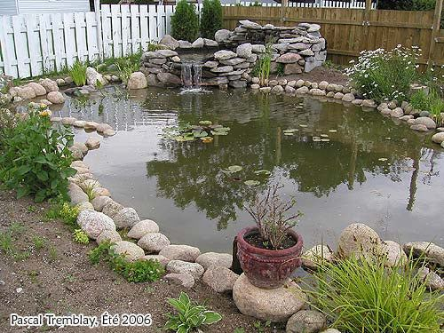 14. How To Build A Backyard Pond For Ducks