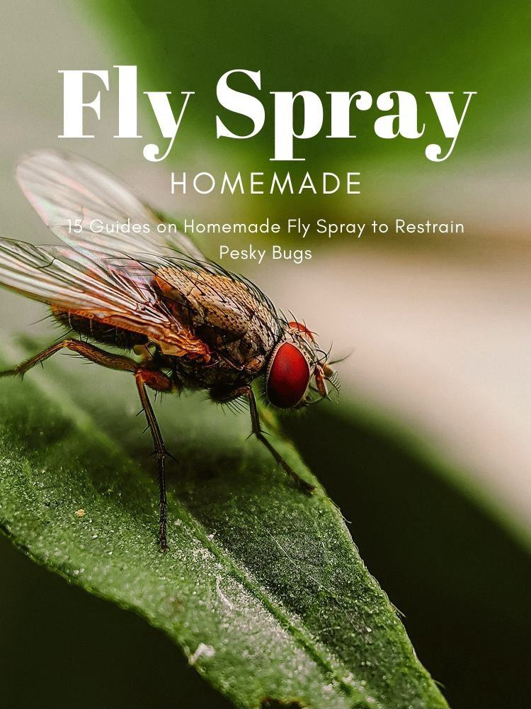 15 Guides on Homemade Fly Spray to Restrain Pesky Bugs