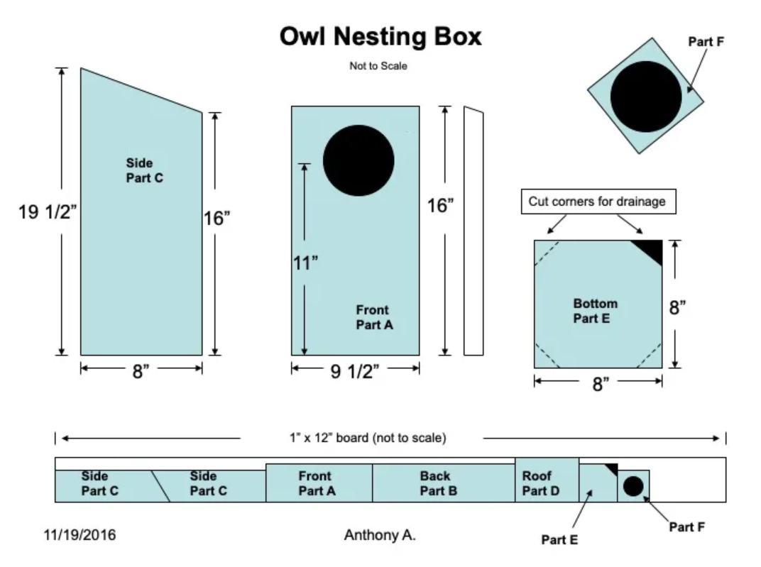 15. DIY Owl House Build