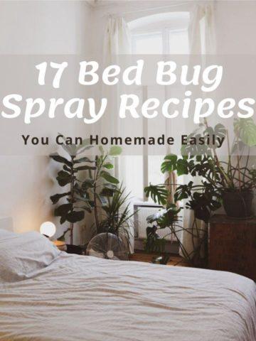 17 Bed Bug Spray Recipes