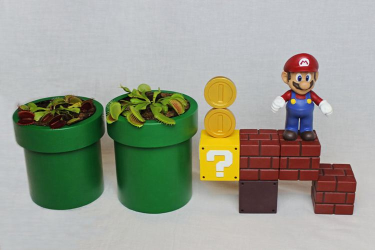 18. DIY Self Watering Mario Planters