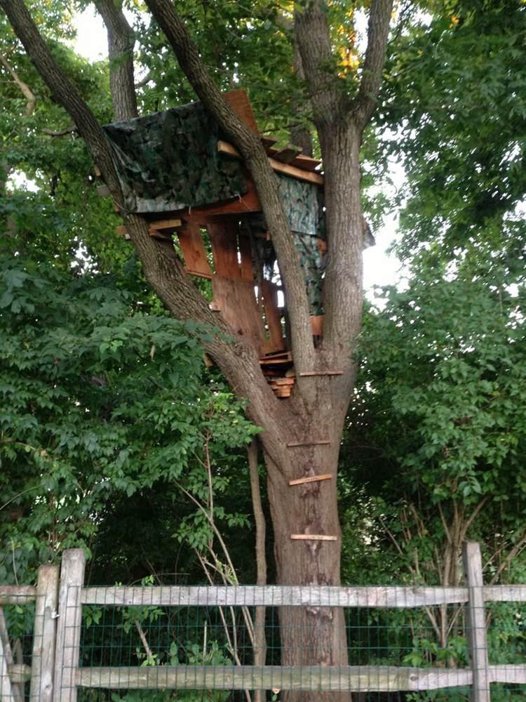 19. DIY Treehouse For Older Kids