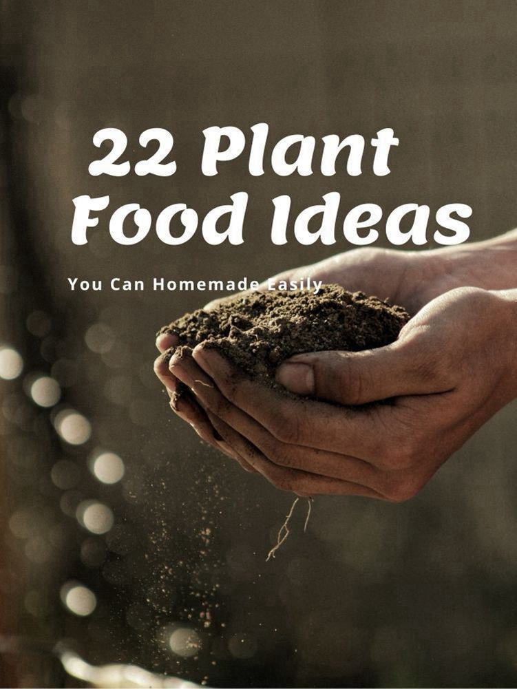 22 Plant Food iDEAS