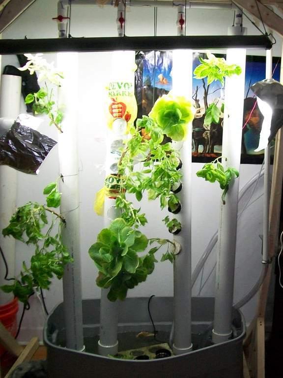 4. Vertical Aquaponic Garden DIY