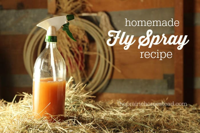 6. Simple Fly Spray Recipes