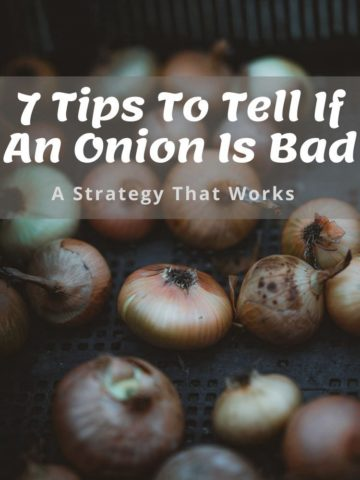 7 Tips To Tell If An Onion Is Bad