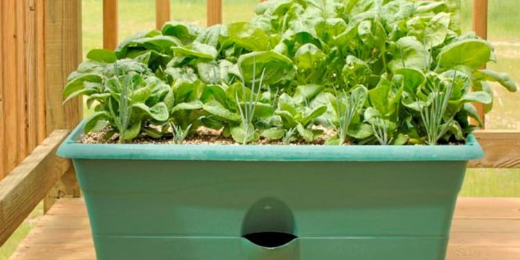 9. How To Make A Self Watering Planter