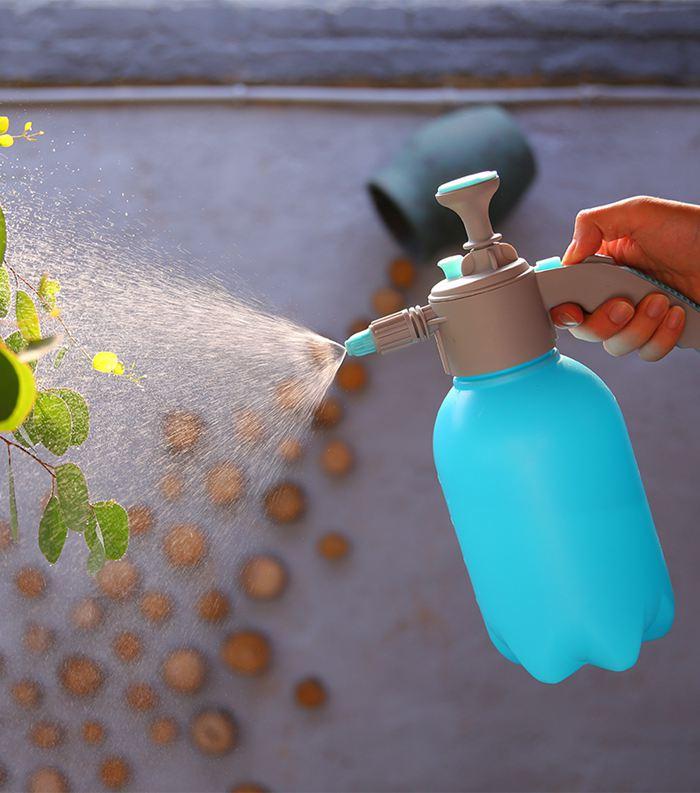 Apple Cider Vinegar Spray