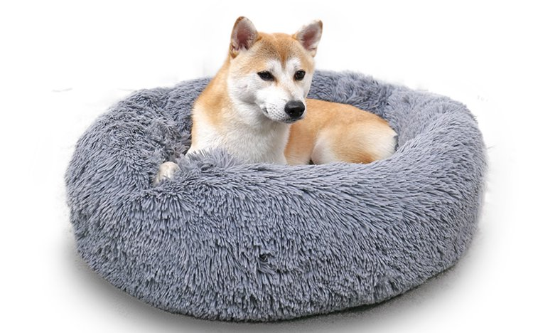 Dog beds without Covers